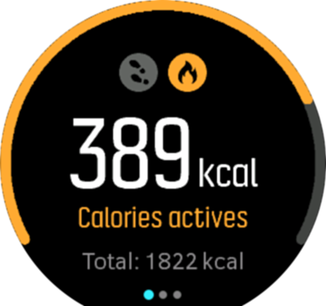 ActivityMonitoring calories Spartan