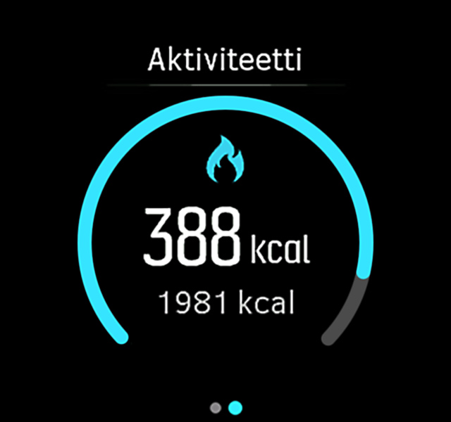 ActivityMonitoring kalorit Spartan