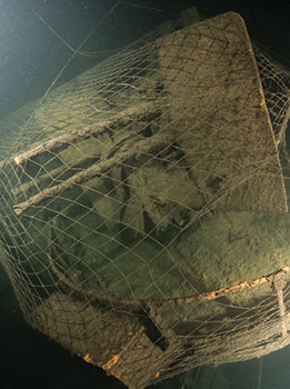 The Z-36 is covered in trawl netting.