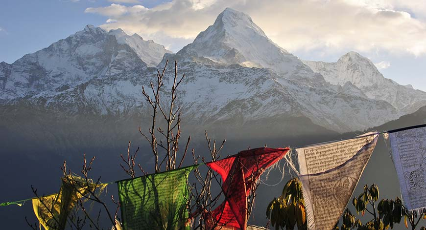 Annapurna / Jennifer Sheppard (Getty Images)