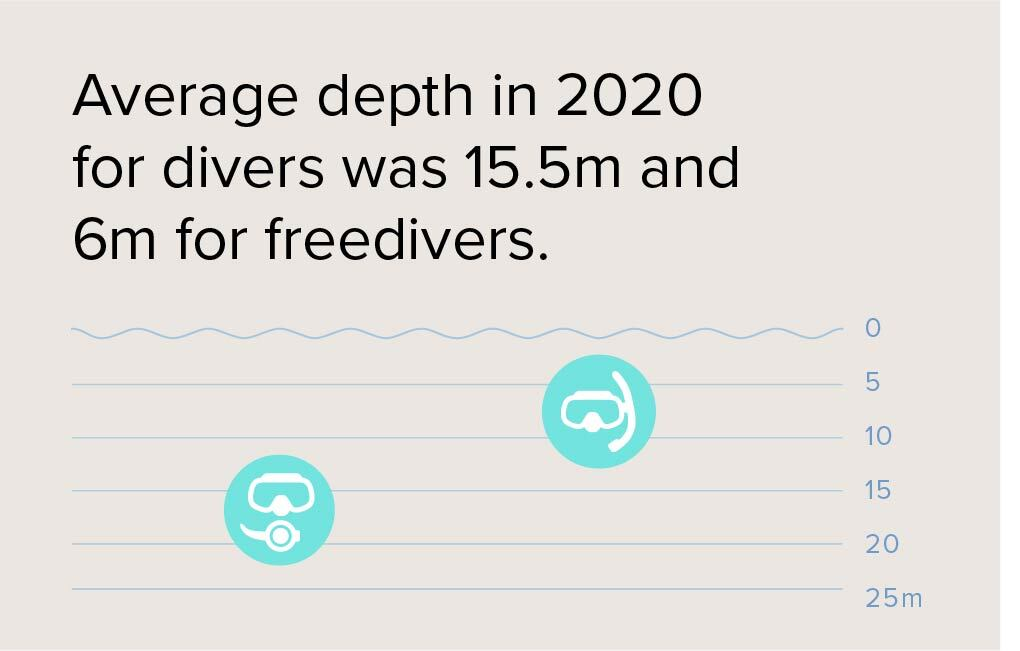 Average dive depths in 2020